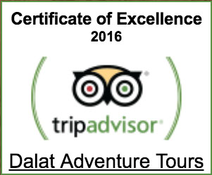 certificate excellent 2016