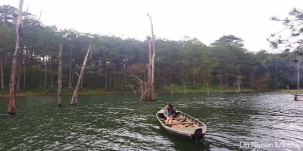 Secret Garden - Khu vườn đẹp như cổ tích ngay bên Hồ Tuyền Lâm